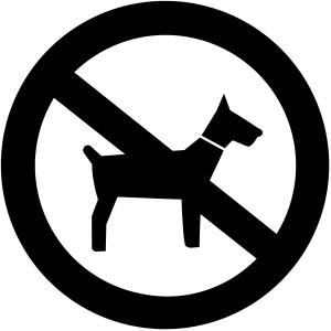 huisdieren_web